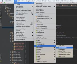 Erstellen eines des Assets Folders. Eigenen Custom Font.